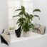 apartment 2 2 -